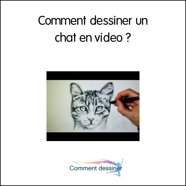 Comment dessiner un chat en video